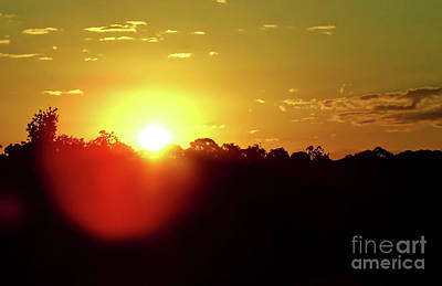 Photograph - Yellow Morning Sunrise by D Hackett