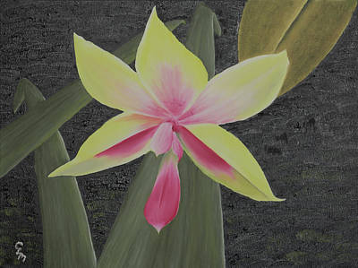 Painting - Yellow Orchid by Stephen Daddona