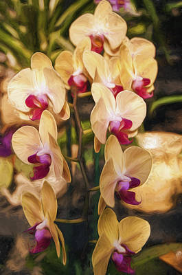 Photograph - Yellow Orchids by Mick Burkey