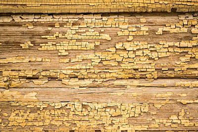 Yellow Painted Aged Wood Art Print by John Williams