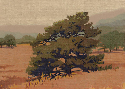 Drawing - Yellow Pine by Dan Miller