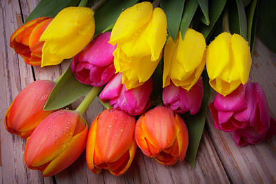 Chip Photograph - Yellow Pink Orange Tulips by Garry Gay