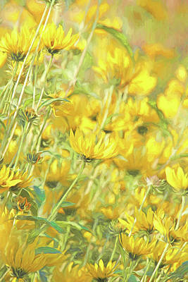 Photograph - Yellow Prairie Compass Flowers by Jennie Marie Schell