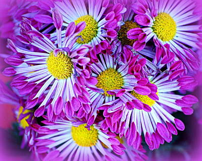 Photograph - Yellow Purple And White by AJ  Schibig