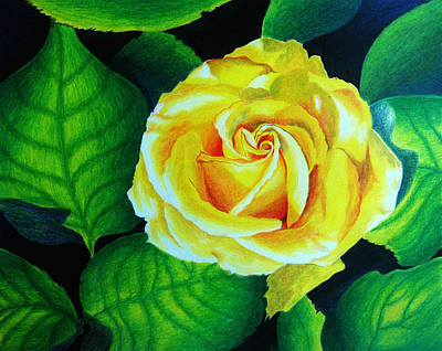 Blooming Drawing - Yellow by Ramneek Narang