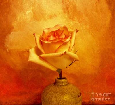 Yellow Red Orange Tipped Rose Art Print by Marsha Heiken