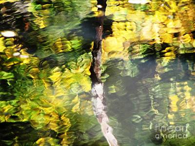 Photograph - Yellow Reflection With Stick by Melissa Stoudt