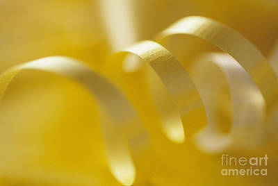 Photograph - Yellow Ribbon by Jim Corwin