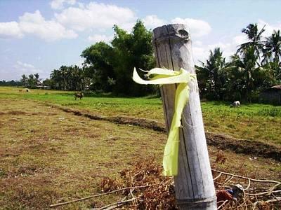 Hero Photograph - Yellow Ribbon by SAIGON De Manila