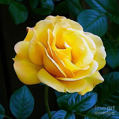 Yellow Rose 06 ... 53.14 Rose Rose Image Art Print
