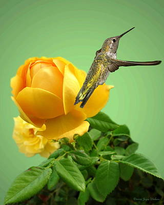 Numbers Plus Photograph - Yellow Rose And Hummingbird 2 by Joyce Dickens