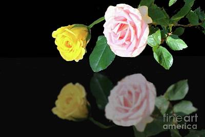 Photograph - Yellow Rose Bud And Pink Rose In Reflection by Janette Boyd