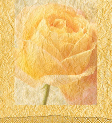 Photograph - Yellow Rose by Catherine Alfidi