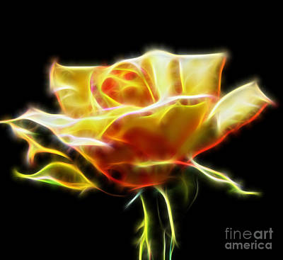 Digital Art - Yellow Rose Fractal by D Hackett