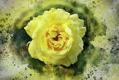 Photograph - Yellow Rose by Judi Saunders