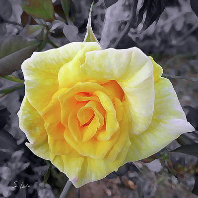 Digital Art - Yellow Rose Oil Painting by S Art