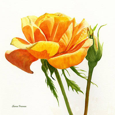 Blooming Painting - Yellow Rose With Bud Square Design by Sharon Freeman