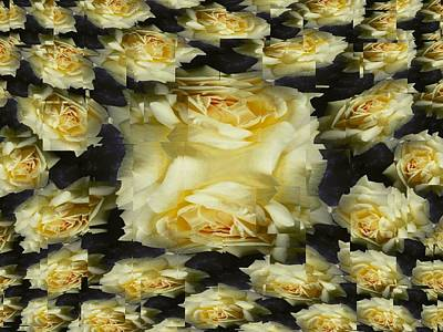 Photograph - Yellow Roses 2 by Tim Allen