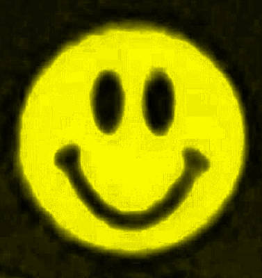 Photograph - Yellow Smiley by Rob Hans