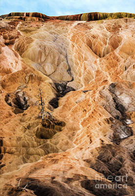 Photograph - Yellow Stone National Park Abstract by Mae Wertz