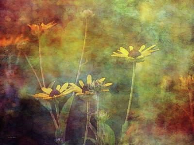 Photograph - Yellow Summer Flowers 3880 Idp_2 by Steven Ward
