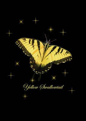 Photograph - Yellow Swallowtail On Black by Joni Eskridge