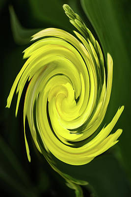 Photograph - Yellow Swirl by Rick Strobaugh