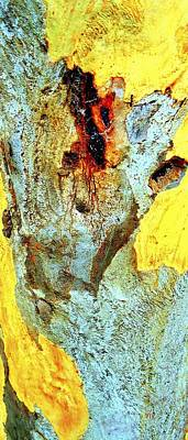 Photograph - Yellow Tree - And  Ant  Australia by VIVA Anderson