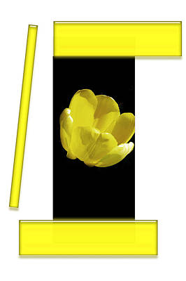 Digital Installation Art Photograph - Yellow Tulip 3 Of 3 by Tina M Wenger