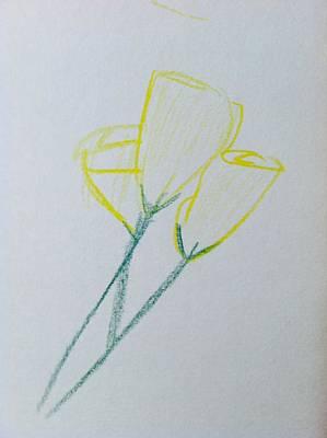 Drawing - Yellow Tulips  by Alohi Fujimoto