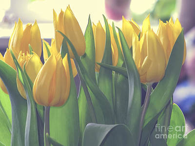 Photograph - Yellow Tulips In A Vase by Patricia Hofmeester