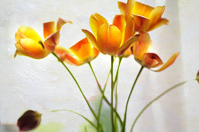 Photograph - Yellow Tulips by Jenny Rainbow
