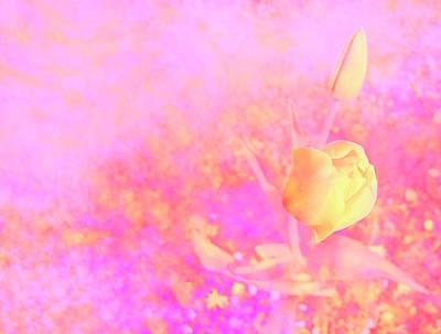 Flower Digital Art - Yellow Tulips by Nat Air Craft