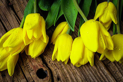 Knothole Photograph - Yellow Tulips On Old Boards by Garry Gay