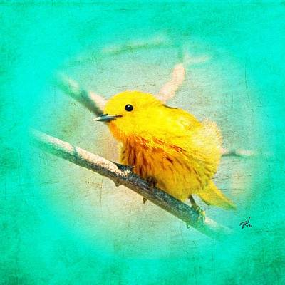 Art Print featuring the photograph Yellow Warbler by John Wills