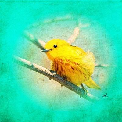 Warbler Mixed Media - Yellow Warbler by John Wills