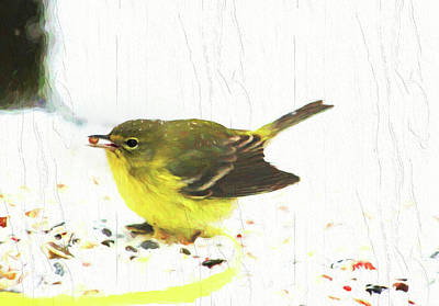 Thomas Kinkade - Pine Warbler Eating Seeds by Ola Allen