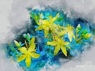 Mixed Media - Yellow Wildflower by Ian Mitchell
