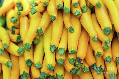 Photograph - Yellow Zucchini by Bruce Block