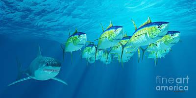 Yellowfin Tuna School Print by Corey Ford