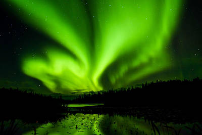 Photograph - Yellowknife Aurora Series 11 by John McArthur