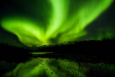 Photograph - Yellowknife Aurora Series 13 by John McArthur
