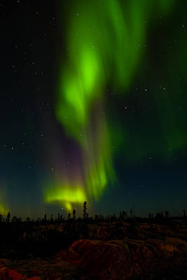 Photograph - Yellowknife Aurora Series 2 by John McArthur
