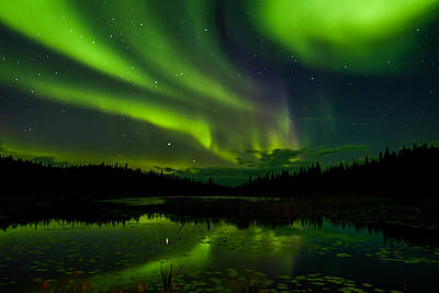 Photograph - Yellowknife Aurora Series 3 by John McArthur