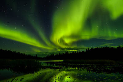 Photograph - Yellowknife Aurora Series 4 by John McArthur