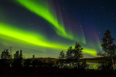 Photograph - Yellowknife Aurora Series 5 by John McArthur