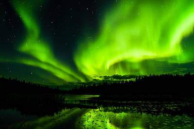 Photograph - Yellowknife Aurora Series 7 by John McArthur