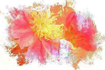 Photograph - Yellows And Pink by Alice Gipson