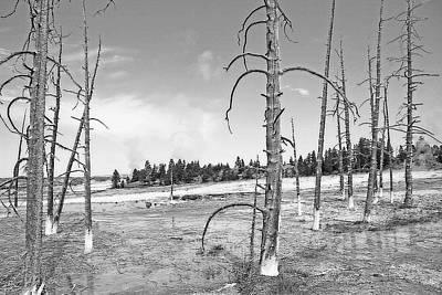 Dead Tree Trunk Digital Art - Yellowstone - Midway Geyser Basin 2 by Steve Ohlsen