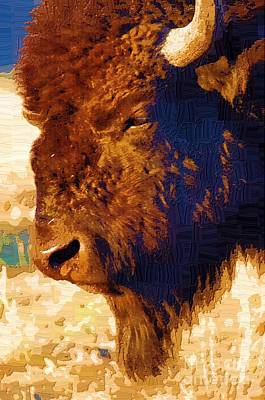 Yellowstone Digital Art - Yellowstone Buffalo by Diane E Berry